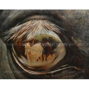 «Глаз лошади. Отражение»